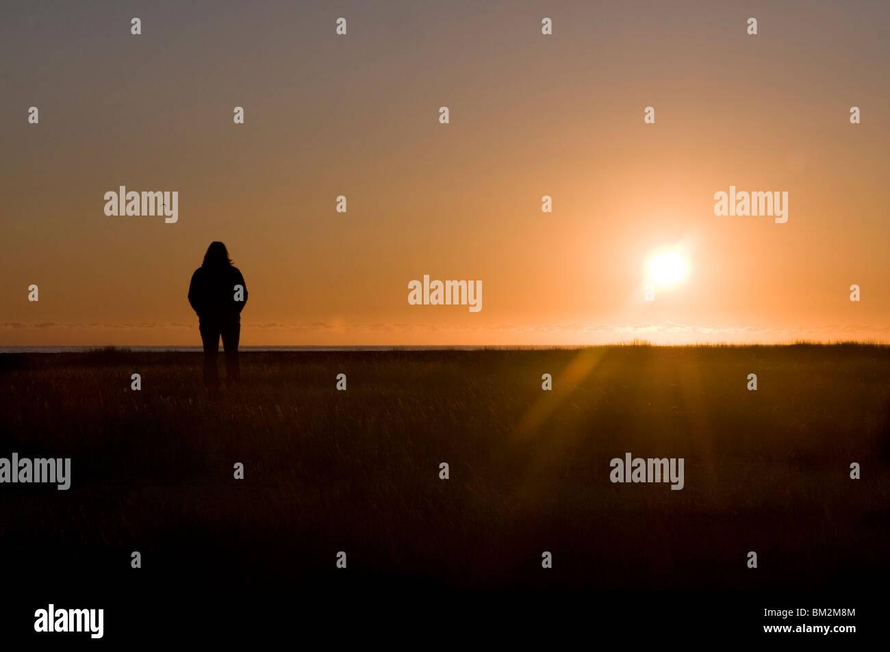 Tourist admiring the midnightsun, Breidavik, Westfjレrds, Iceland, Polar Regions - Stock Image