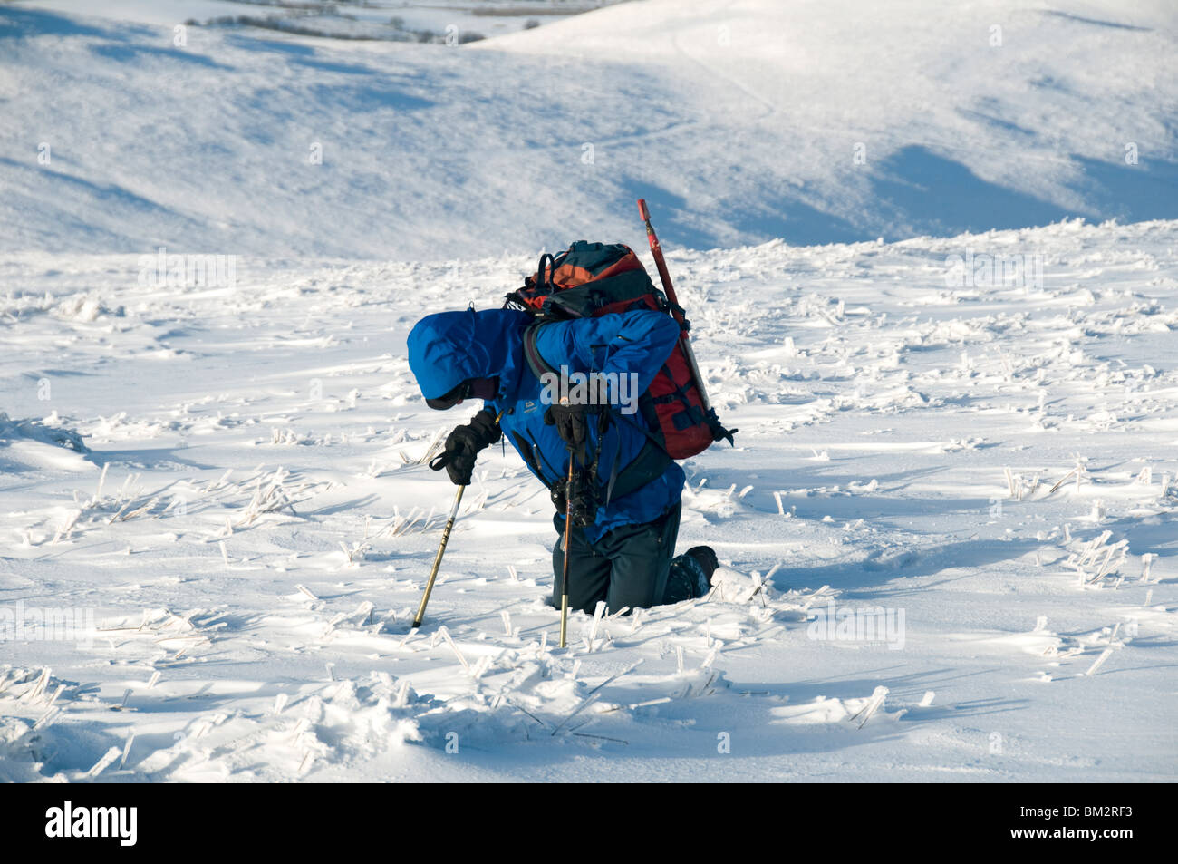 A walker struggling in deep snow on Great Sca fell in the Caldbeck Fells in winter, Lake District, Cumbria, England, - Stock Image
