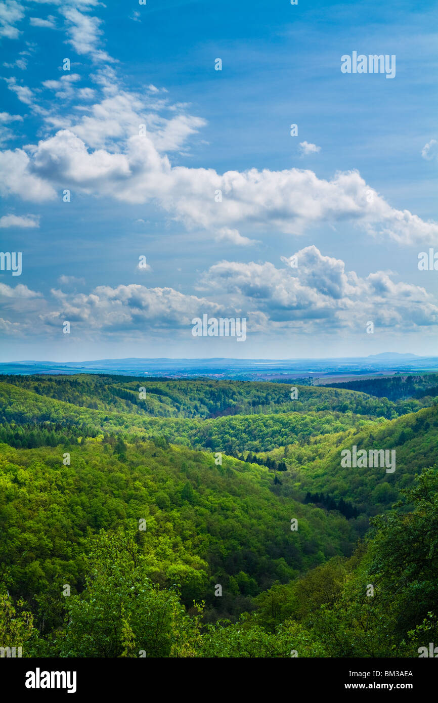 Beautiful spring forest on hills with a blue sky above. - Stock Image