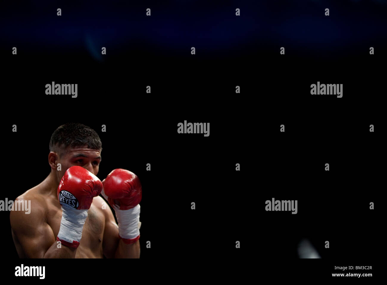 Boxer David Carmona waits for his opponent during a boxing bout in Mexico City, December 9, 2009. - Stock Image