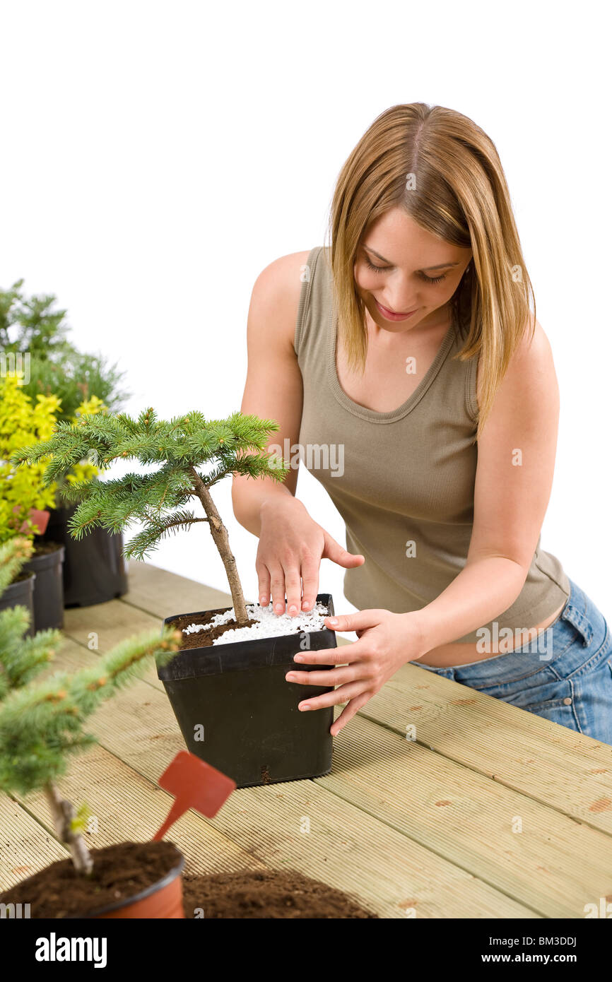 Gardening - woman with bonsai tree and plants take care - Stock Image