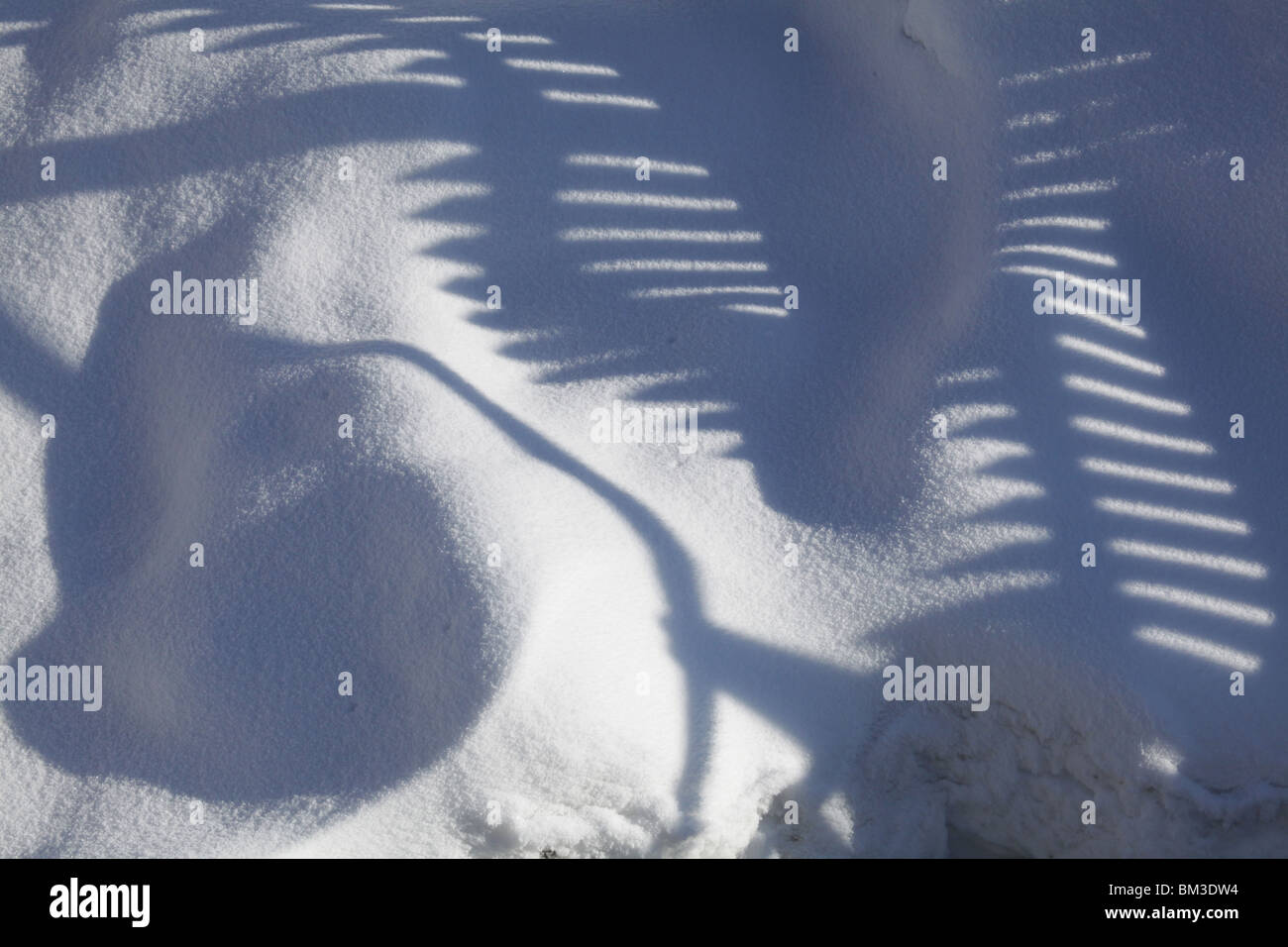 winter snow covered frozen fence shadow shadows cast cool light Kajaani Finland city centre - Stock Image