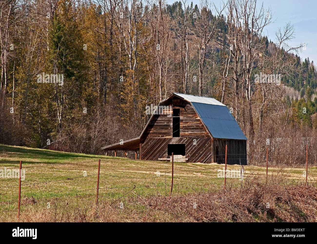 This old barn is in a pasture in springtime with wooded hills in the background. This is located in Pend Oreille - Stock Image