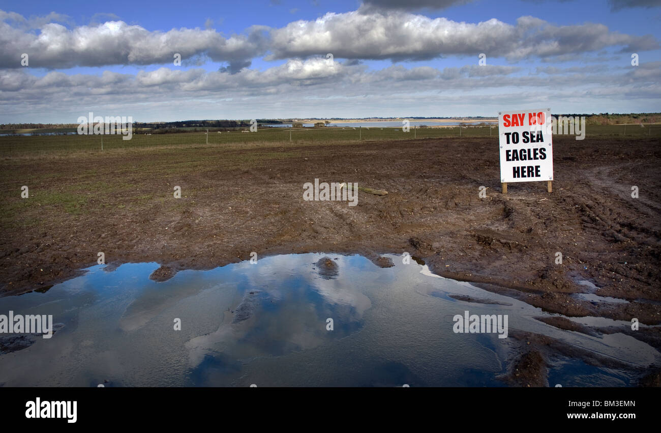say no to sea eagles sign at blythburgh suffolk england - Stock Image