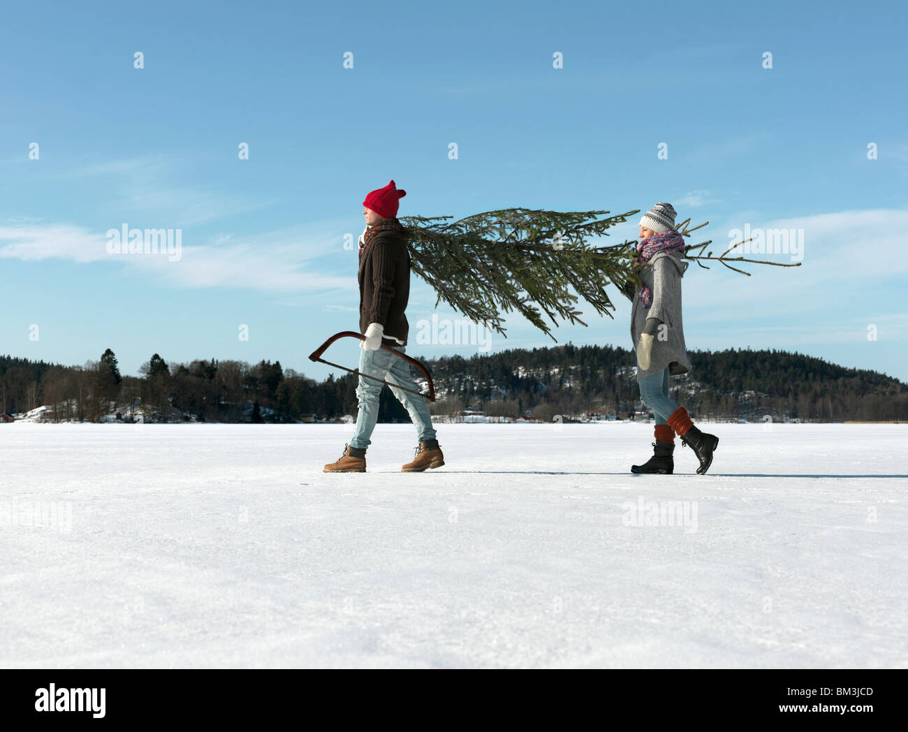 Couple with christmas tree - Stock Image