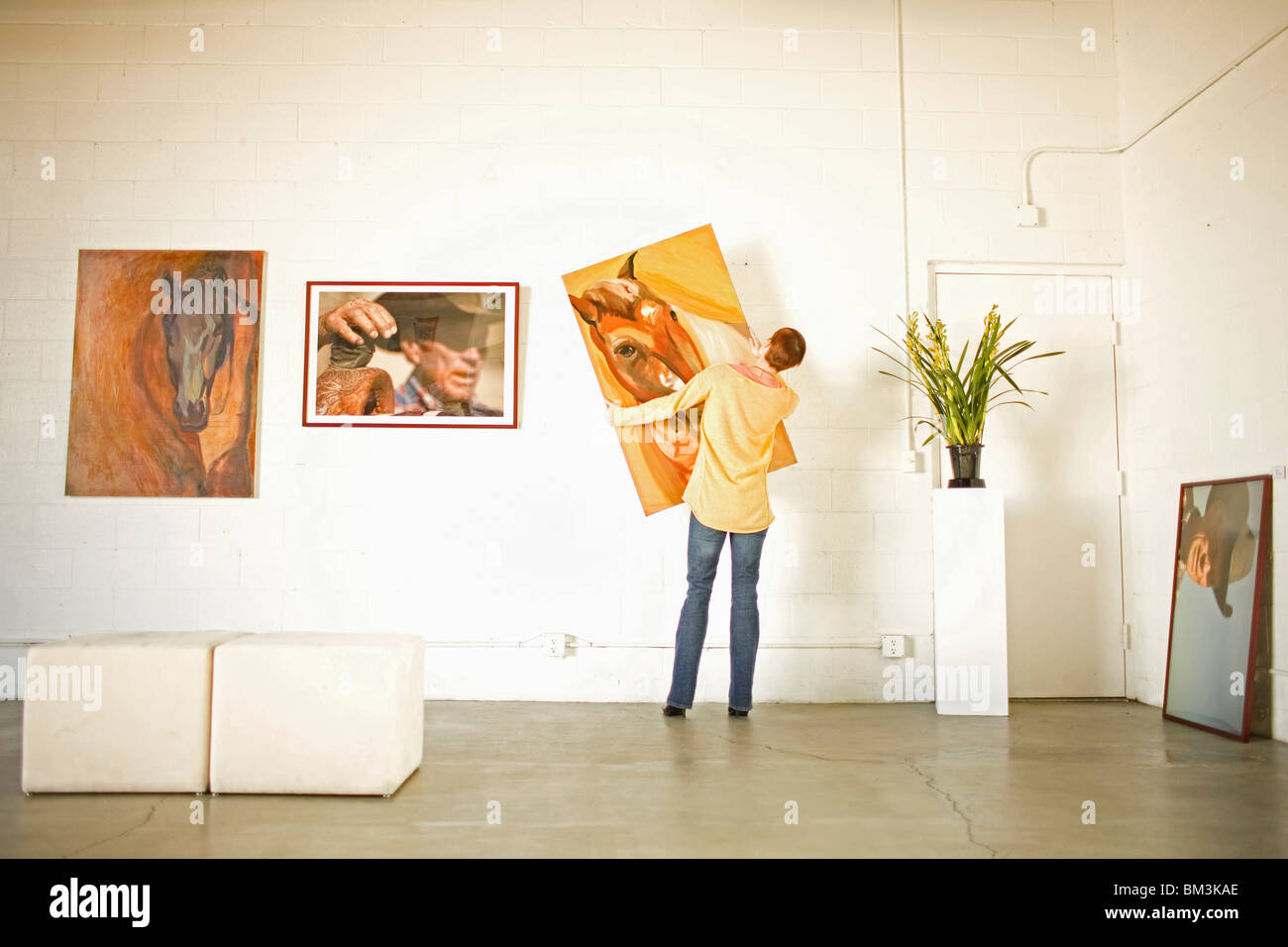 Owner hanging art in gallery - Stock Image