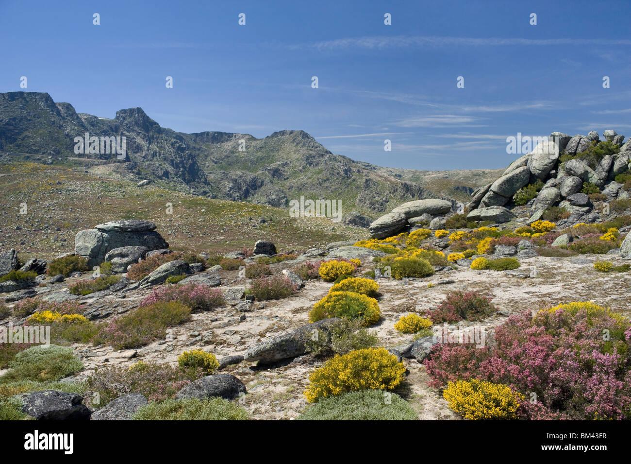 Portugal, The Beira Alta,  Serra De Estrela Mountain - Stock Image
