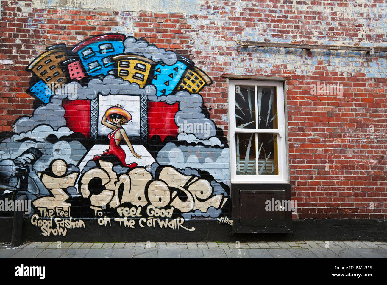 Urban art on Struthers Lane. Christchurch, Canterbury, South Island, New Zealand - Stock Image