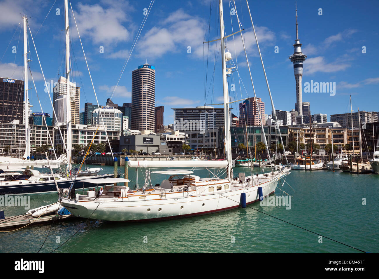 Yachts in Viaduct Basin with city skyline in background. Auckland, North Island, New Zealand - Stock Image