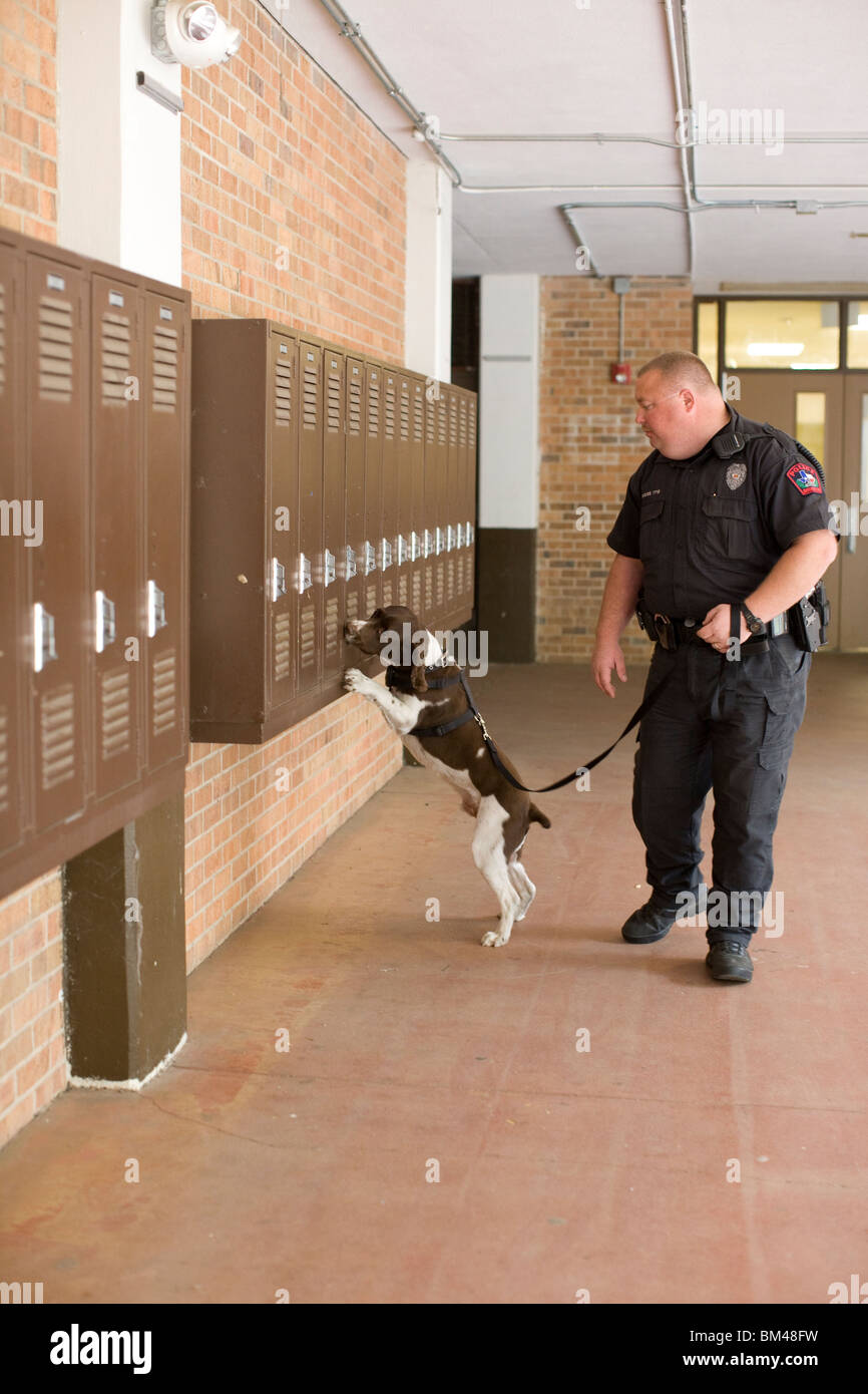 Police officer inspects high school lockers with 'Buddy,' a contraband-sniffing English Springer spaniel - Stock Image