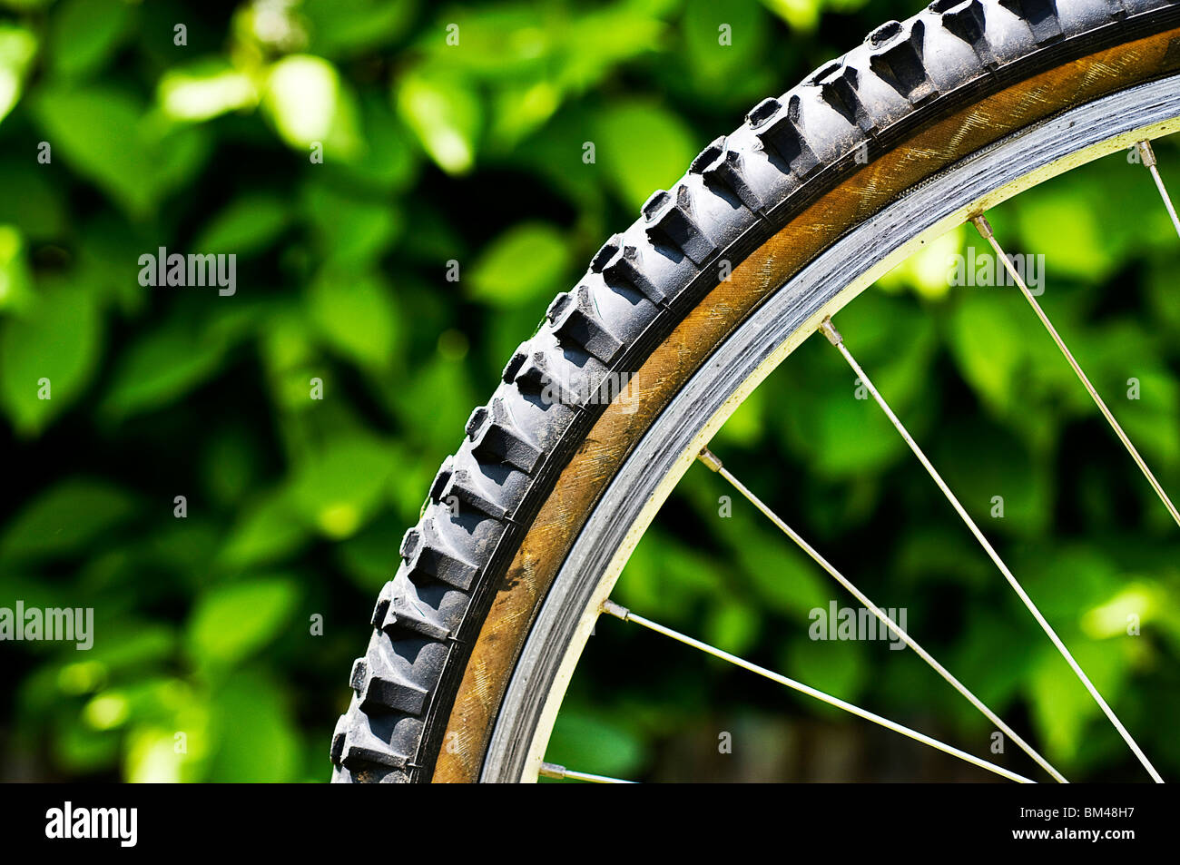 Mountain bike tyre - Stock Image
