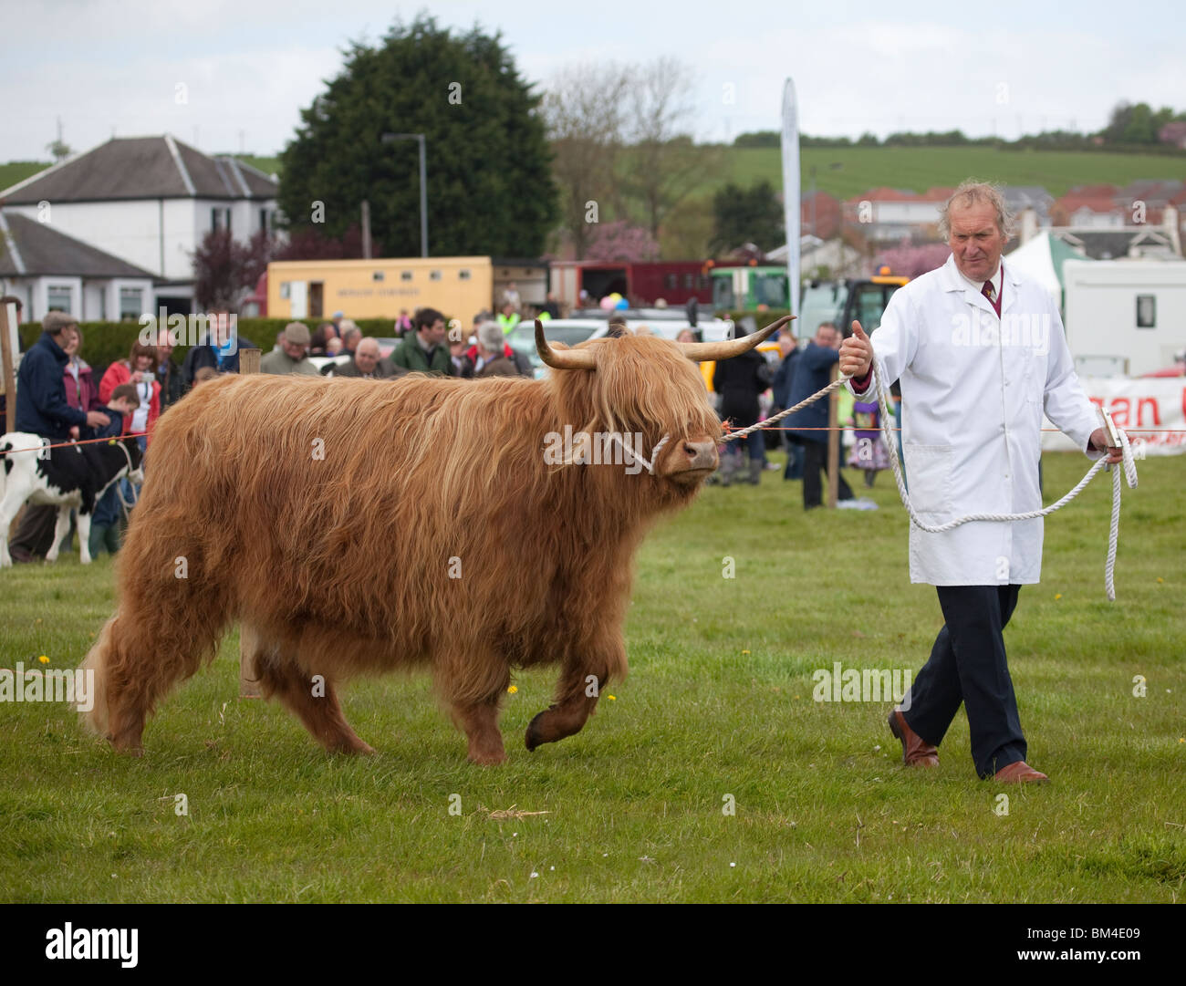 Farmer with his Highland cow (or bull, haha, it's all covered with long hair!) at a cattle show. - Stock Image