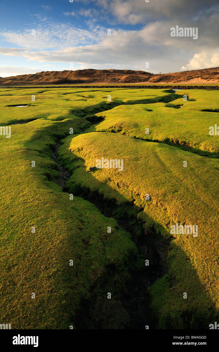 Evening light models a dramatic fissure in the salt marsh where the River Ogmore meets the sea in Southern Wales Stock Photo