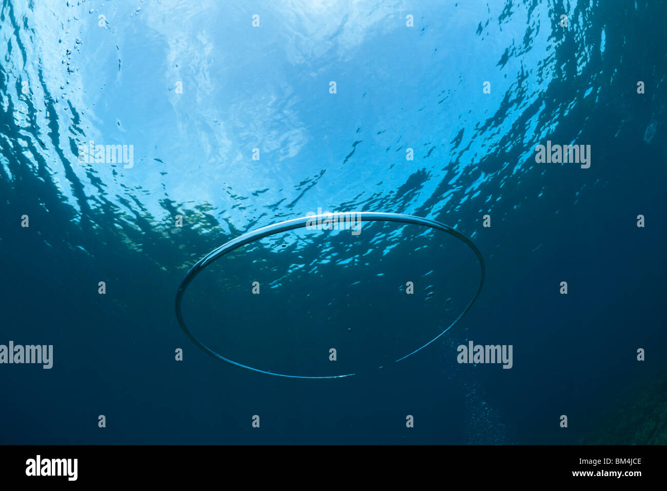 Bubble Ring made by Scuba Diver underwater, Raja Ampat, West Papua, Indonesia Stock Photo