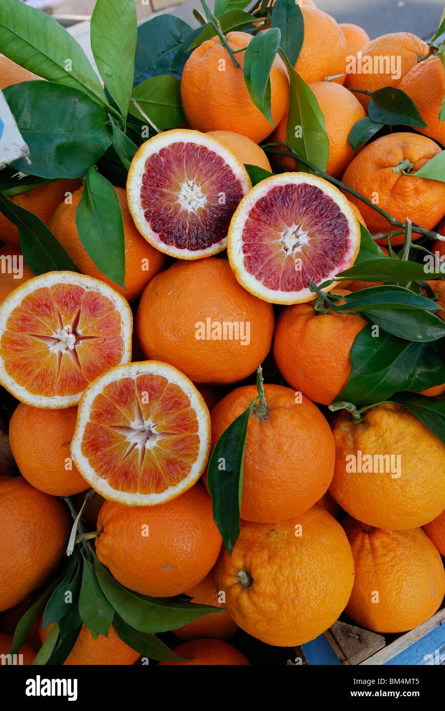 Syracuse / Siracusa. Sicily. Italy. Ortygia. Sicilian Tarocco Oranges on sale at the market. - Stock Image