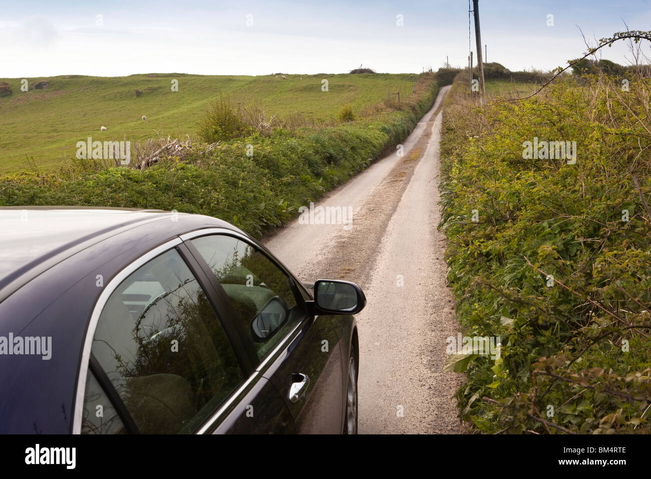 UK, England, Devon, Ilfracombe, Higher Hawcombe, car driving along narrow country lane - Stock Image