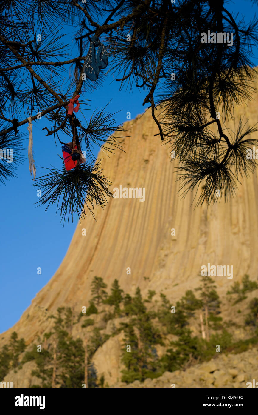 Native American tied prayer cloths and tobacco offerings hanging from a tree at Devils Tower National Monument, - Stock Image