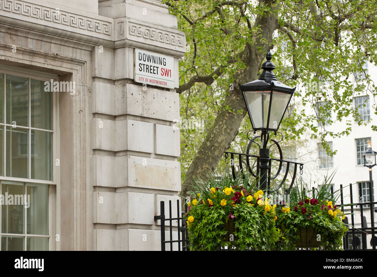 Downing Street sign - Stock Image