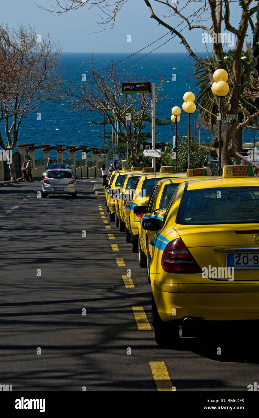 Line of yellow taxis waiting for business Funchal Madeira Portugal EU Europe Stock Photo