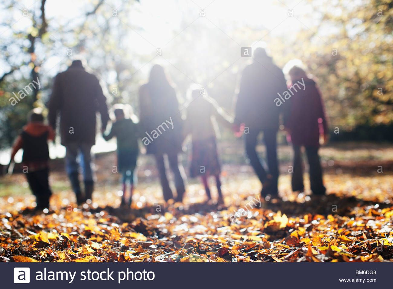 Extended family walking in park in autumn - Stock Image
