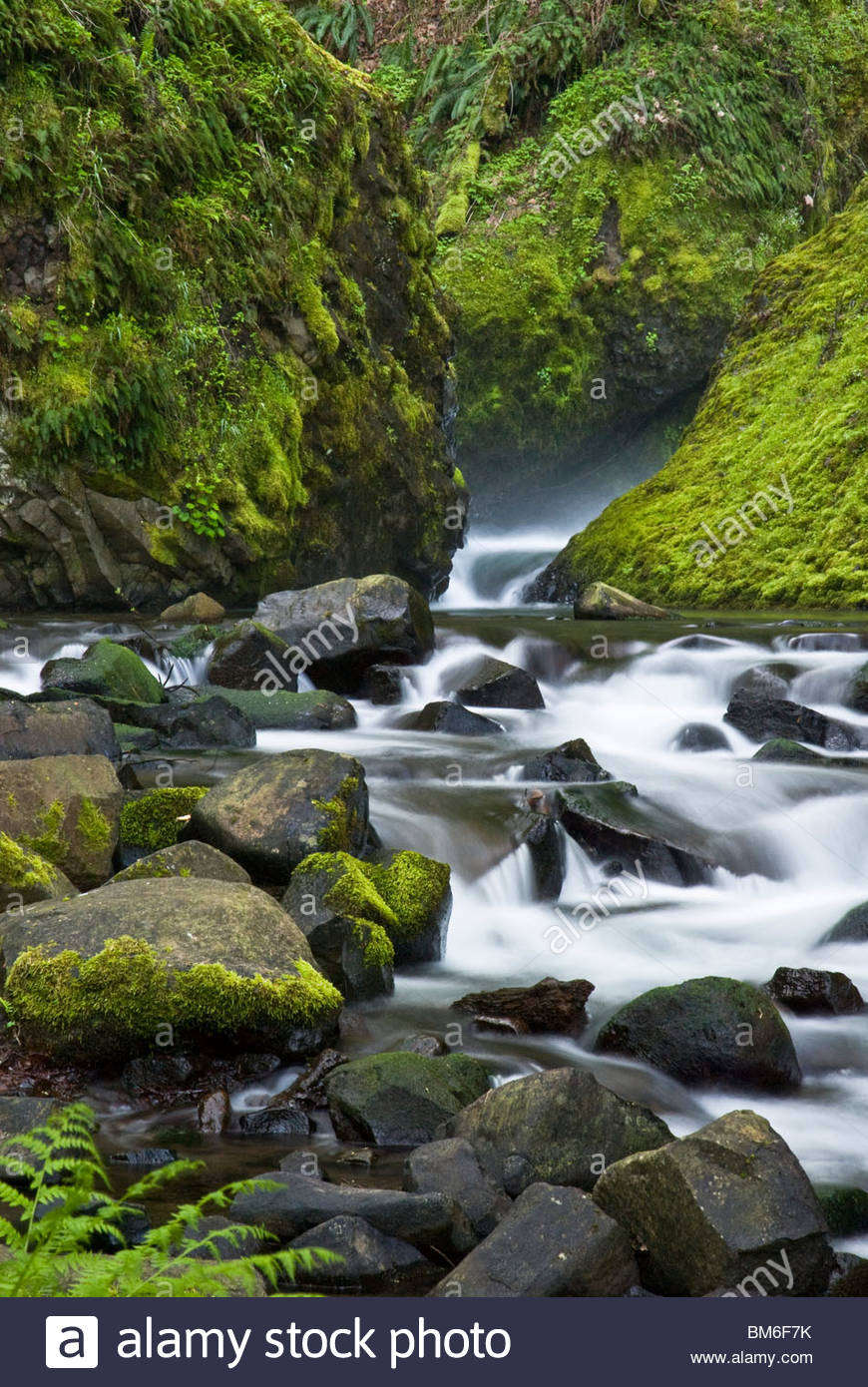 Stream in Bridal Veil Falls State Park, Oregon - Stock Image