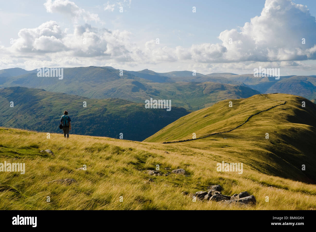 Lone walker on ridge above Hartsop Dodd, Lake District, with Helvellyn on the horizon - Stock Image