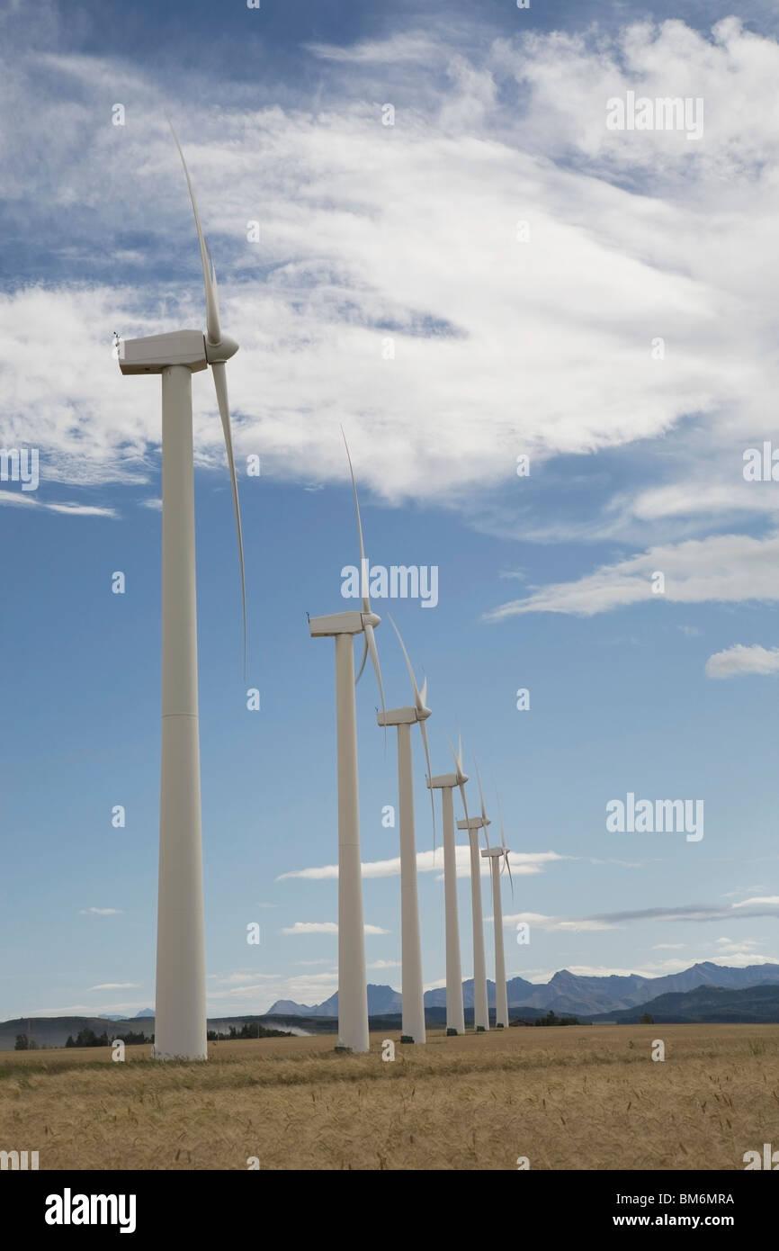 Pincher Creek, Alberta, Canada; Wind Turbines In A Row In A Wheat Field - Stock Image