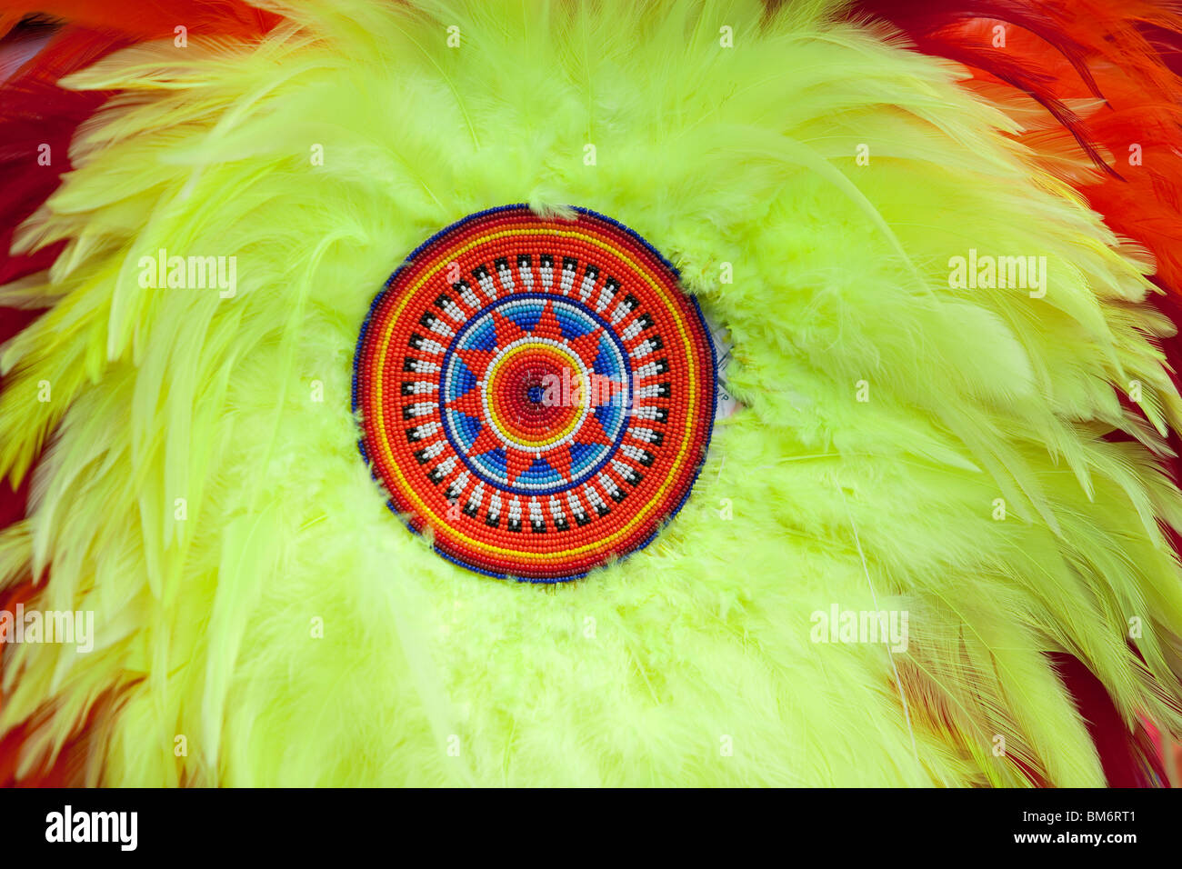 Close up image of an American Indian feather bustle, with detailed beadwork. These bussles are used as dance regalia - Stock Image