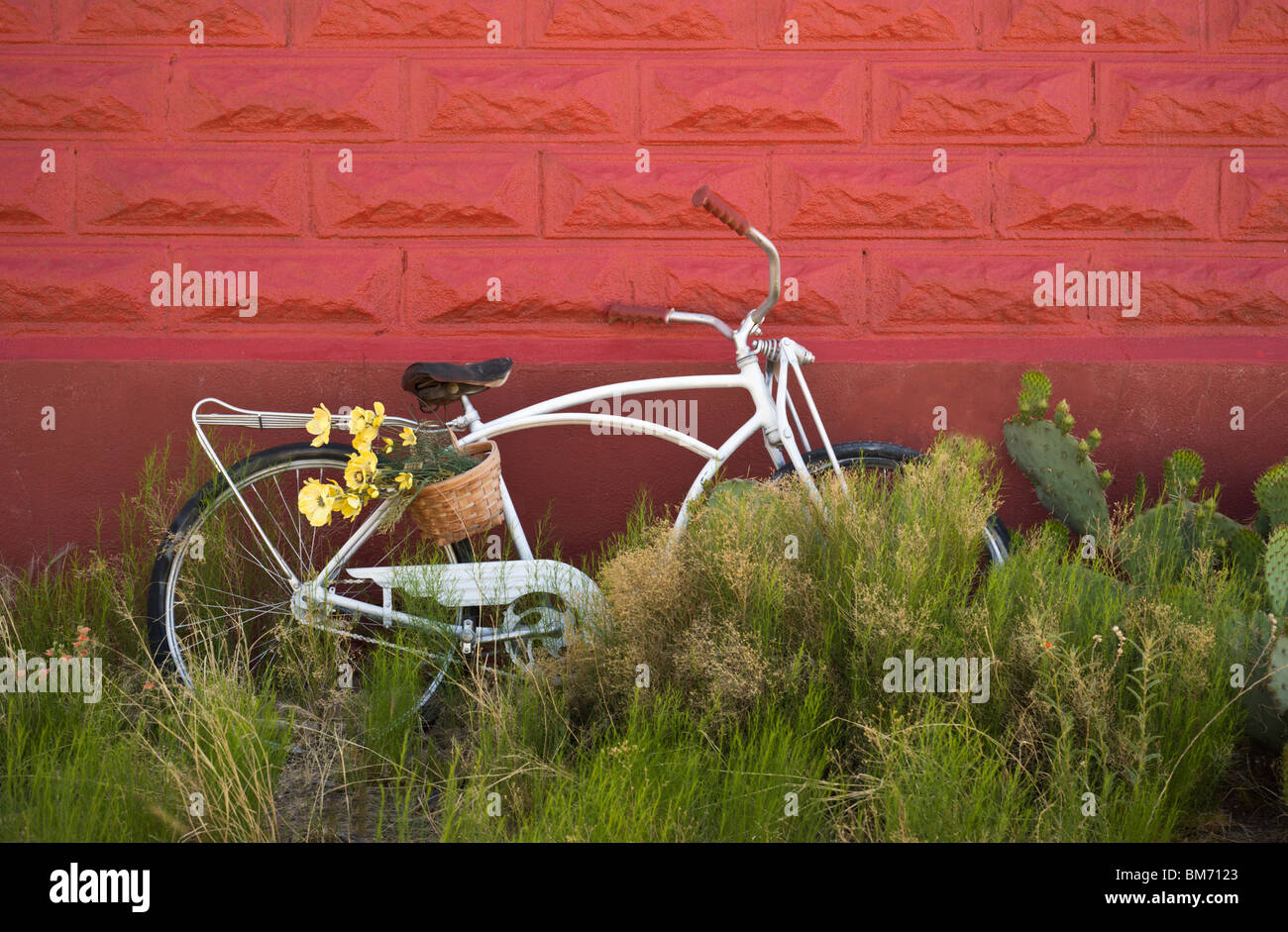 An old abandoned bicycle, parked in the weeds, leans against the wall of the Red Schoolhouse in Three Rivers, New - Stock Image