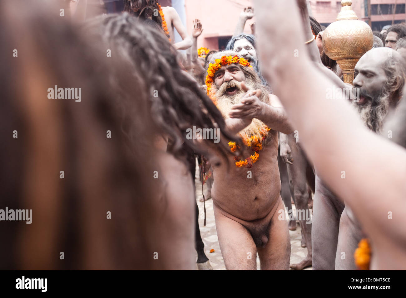 Naga Sadus during the Haridwar Kumbh mela 2010. India. - Stock Image