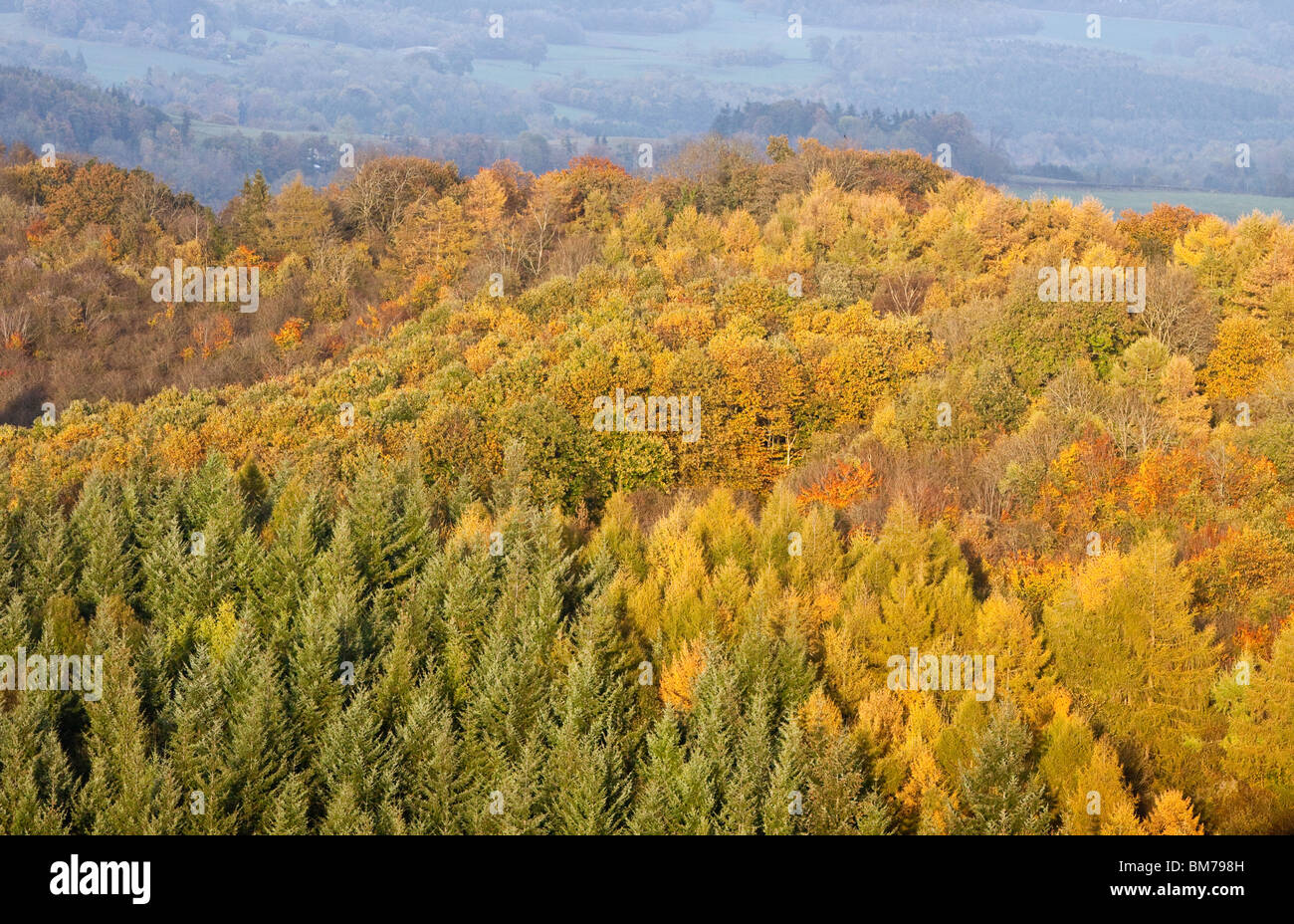 An autumn view from Symonds Yat Rock to the Forest of Dean, Gloucestershire, England, UK - Stock Image