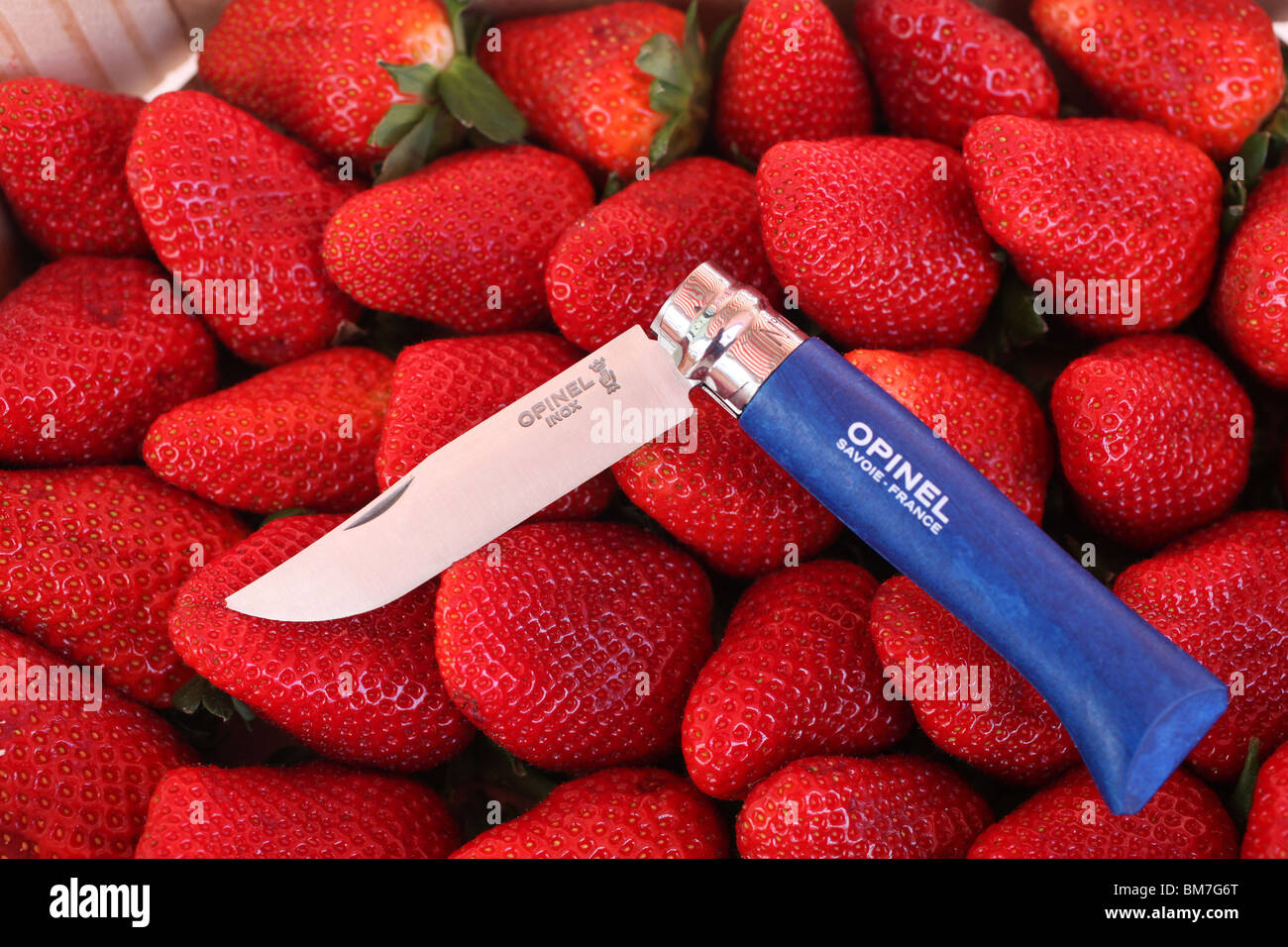 Opinel knife on strawberries - Stock Image