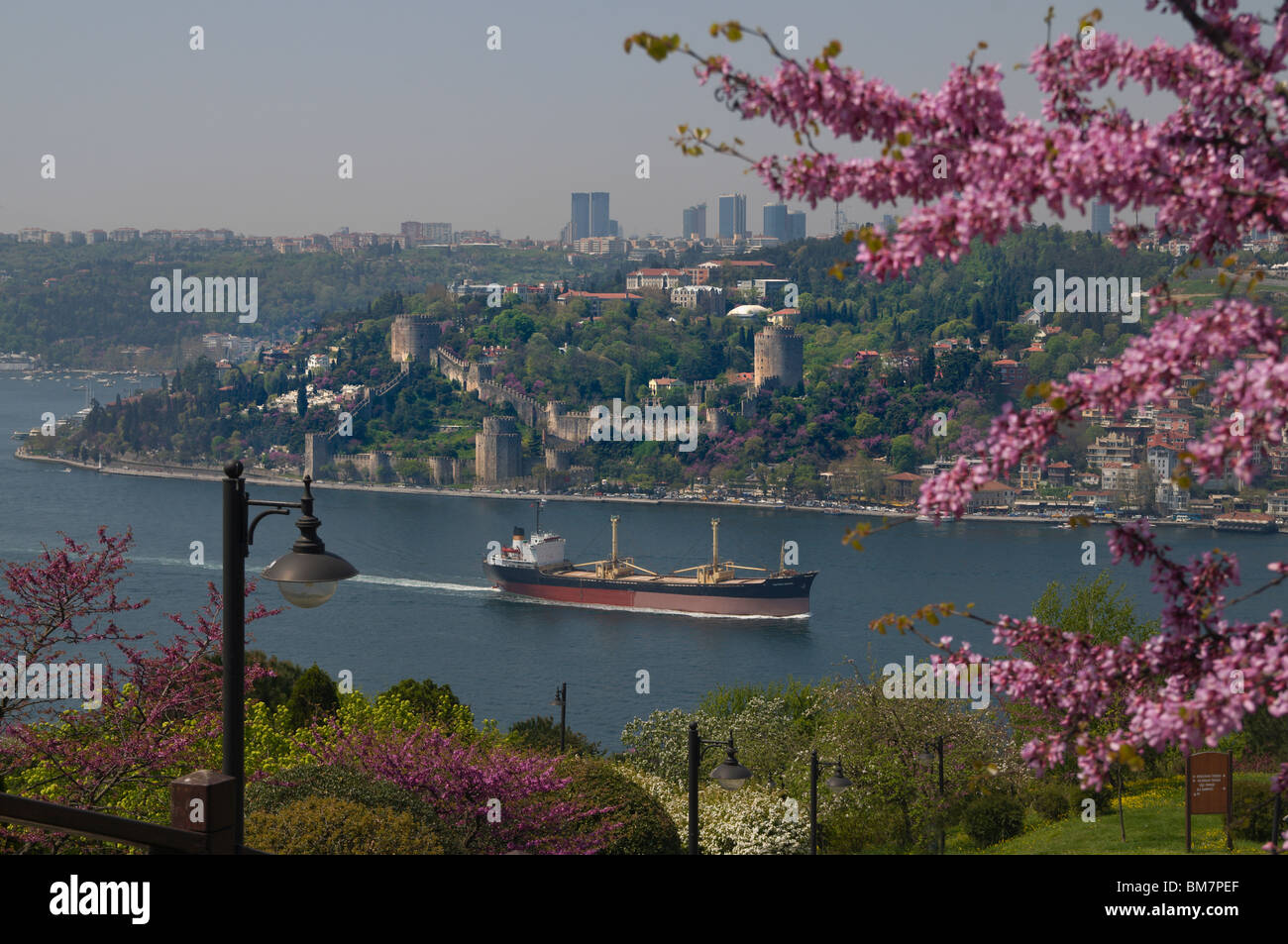 Rumeli Hisari,Thracian Castle,1452 fortress,judas-tree,overlooking Bosphorus, Istanbul Stock Photo