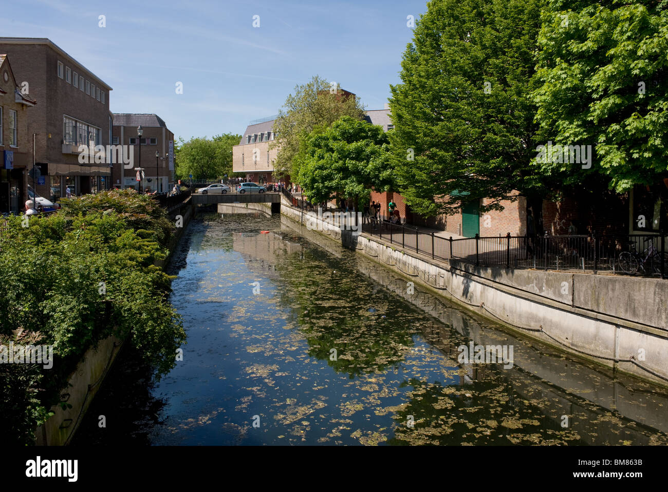 The River Chelmer running through Chelmsford in Essex.  Photo by Gordon Scammell Stock Photo