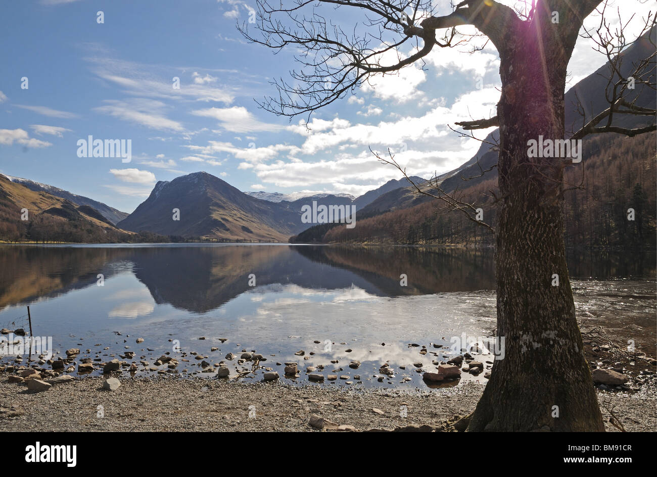Buttermere Lake and valley with Fleetwith Pike seen through trees at the western end of the lake Cumbria English Stock Photo