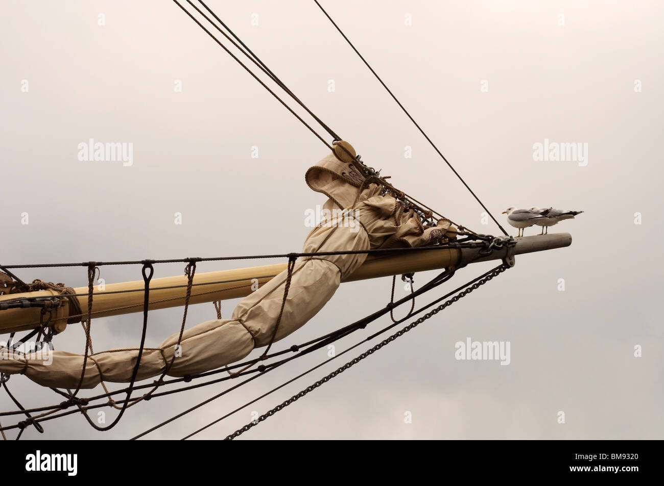 A brig bowsprit with folded sail and two seagulls - Stock Image
