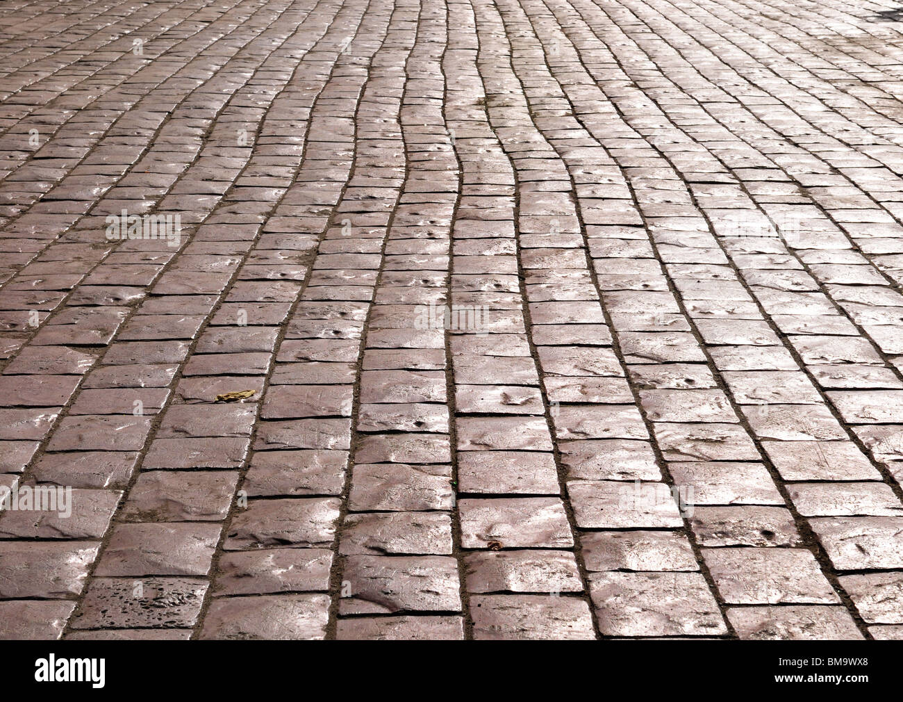 Street paved with cobblestone - Stock Image