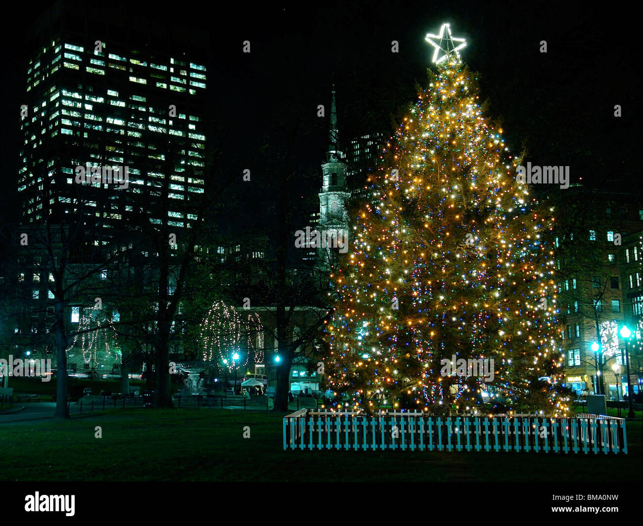 large decorated outdoor christmas tree on boston common lit up at night  sc 1 st  Alamy & large decorated outdoor christmas tree on boston common lit up at ...
