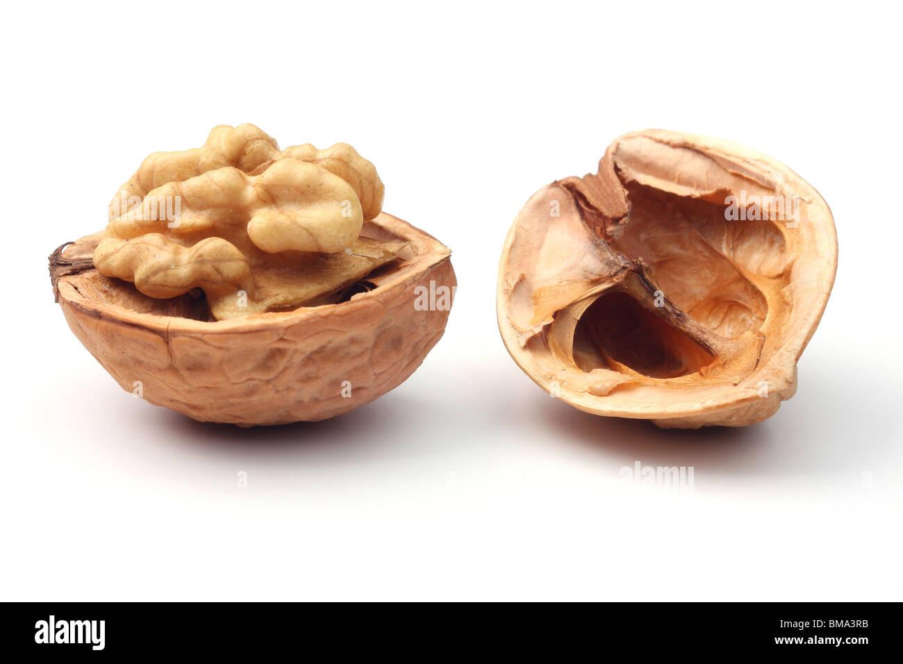 Walnut against white background - Stock Image