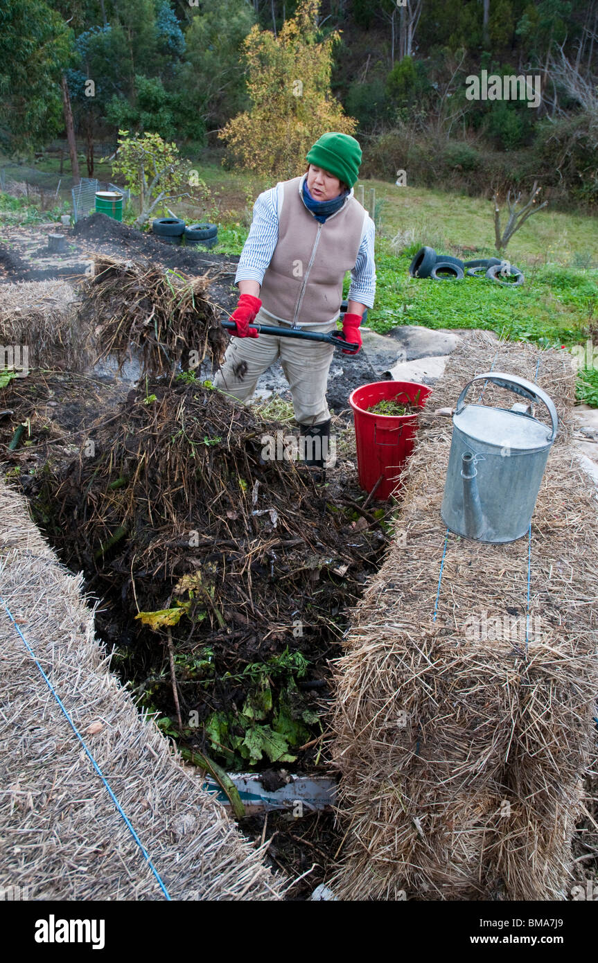 Woman turning a compost heap worm farm set amongst hay bales - Stock Image