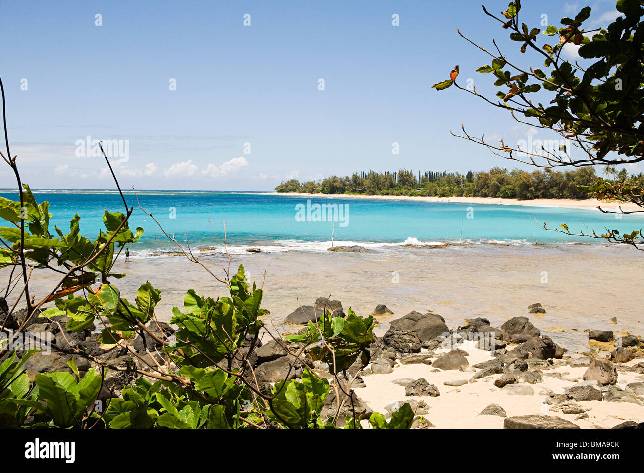 Beach in kauai - Stock Image