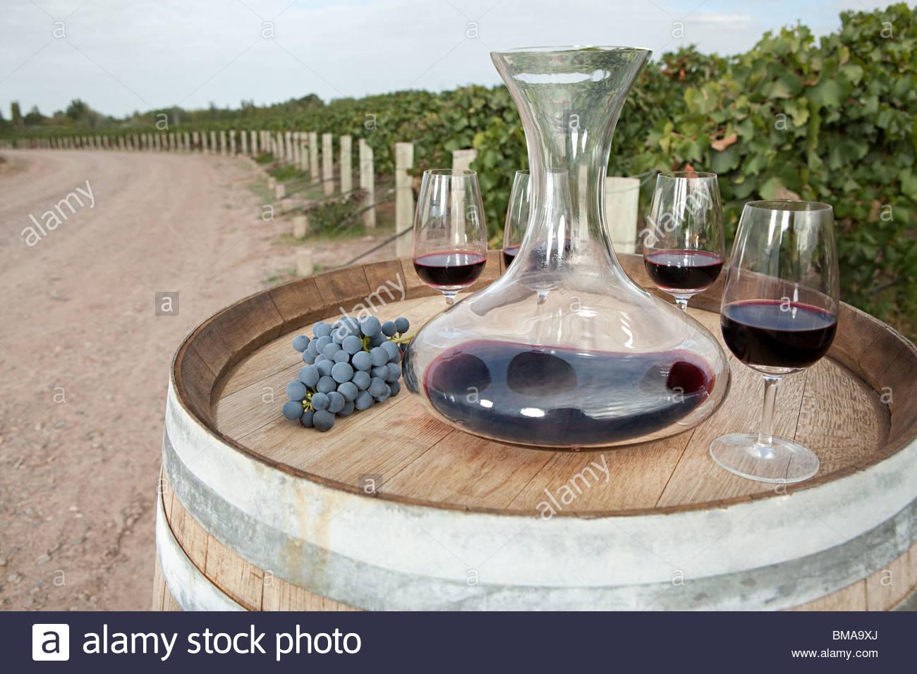 Red wine in vineyard - Stock Image