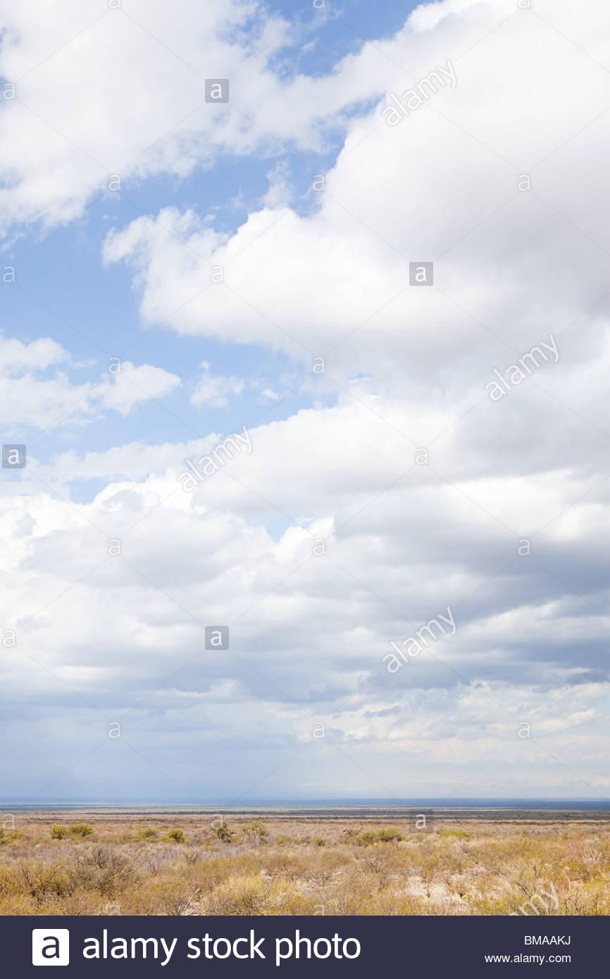 Landscape of los berros in san juan province of argentina - Stock Image