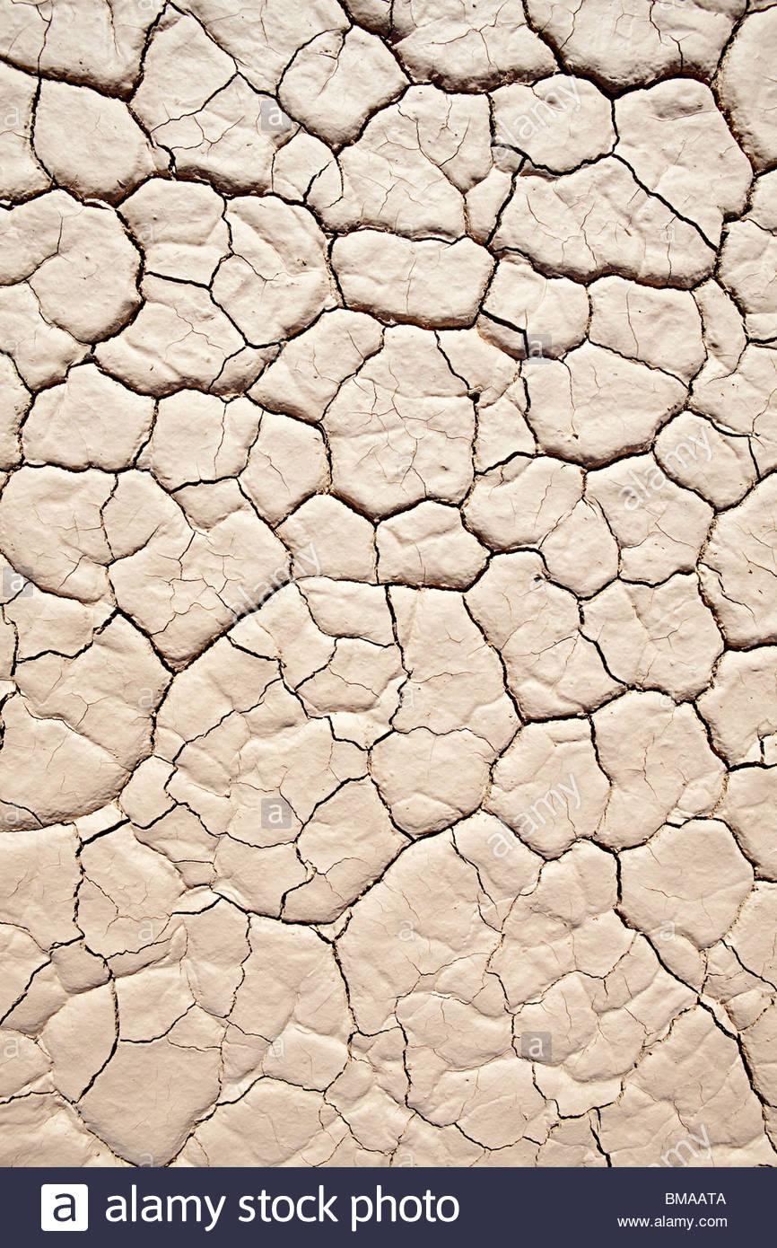 Cracked surface of salt pan - Stock Image