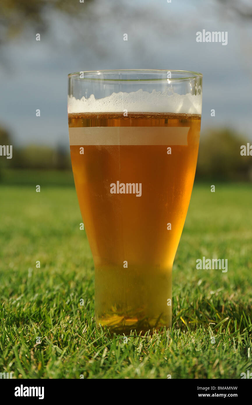 Pint of larger on grass in a garden - Stock Image
