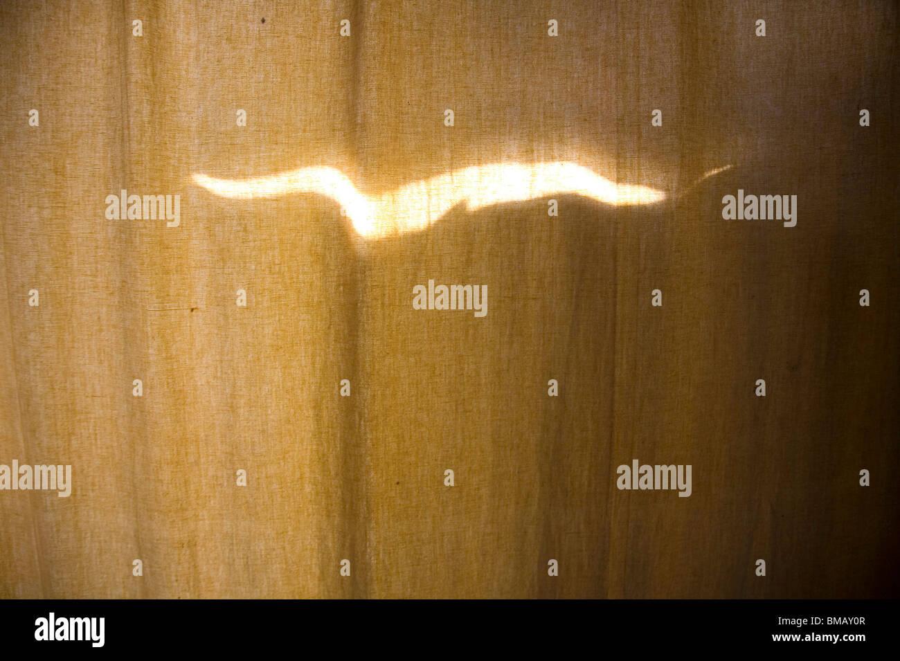 Light bird shape art on brown background ; Dhaka ; Bangladesh - Stock Image