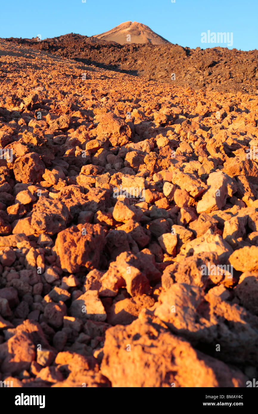 Fields of pumice stone and lava glowing red with the warm late evening sun at the base of Teide Tenerife Canary - Stock Image