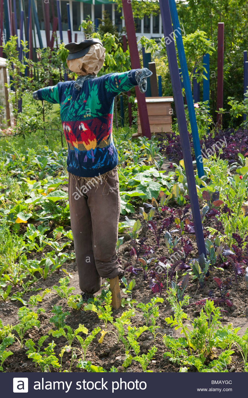 RHS Chelsea Flower Show 2010 Eden Project  Places of Change garden by Paul Stone. Scarecrow in vegetable garden - Stock Image