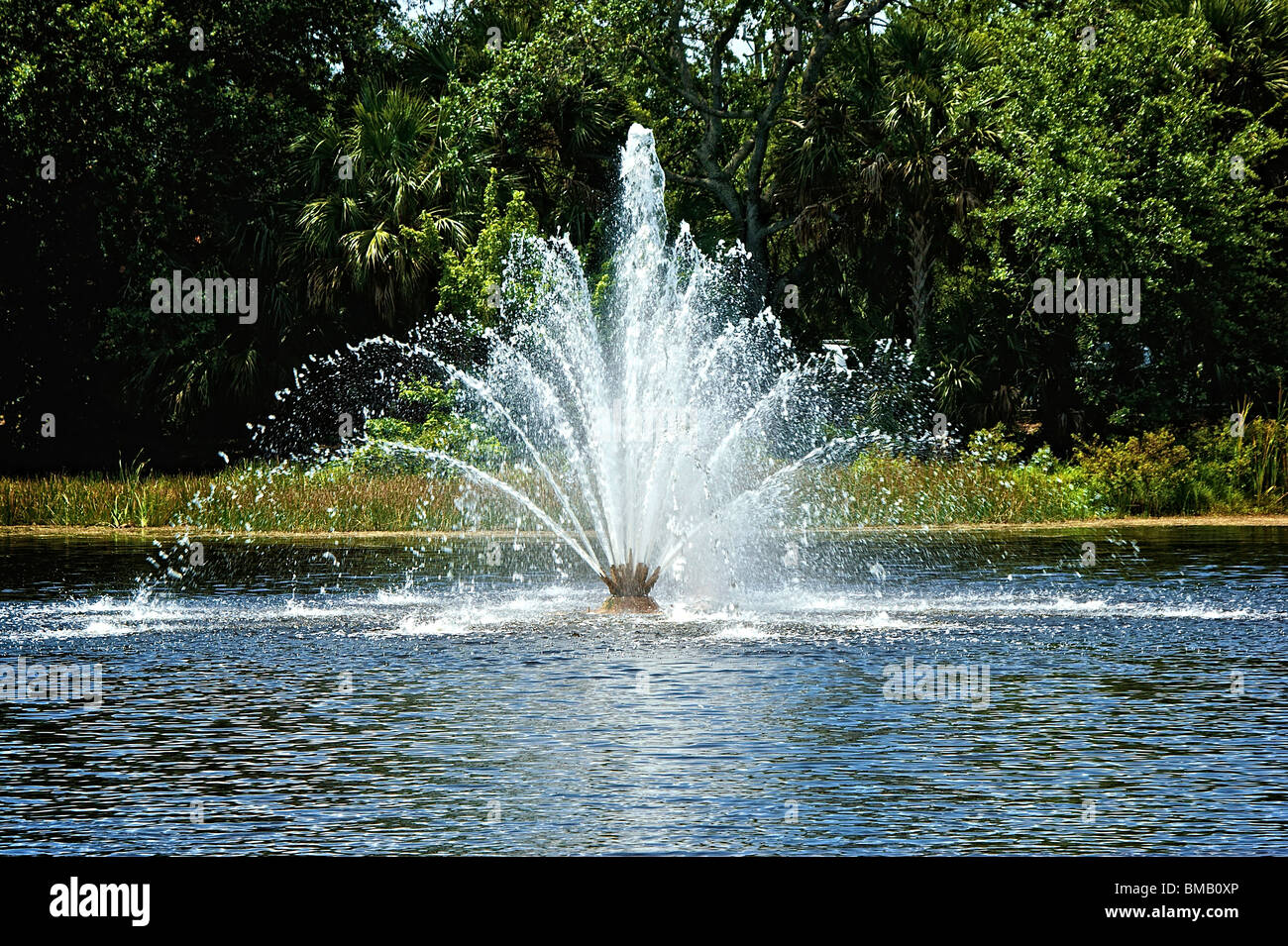 beautiful fan shaped water fountain in the middle of a man made pond on a sunny day in bonita springs florida - Stock Image