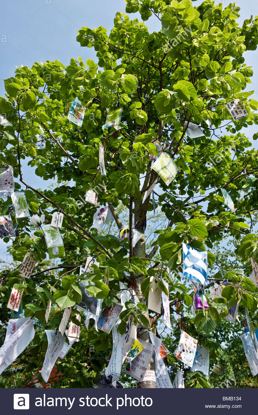 RHS Chelsea Flower Show 2010 Eden Project  Places of Change garden by Paul Stone. Tree hung with labels & messages - Stock Image